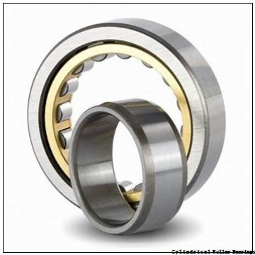 14.173 Inch   360 Millimeter x 25.591 Inch   650 Millimeter x 9.134 Inch   232 Millimeter  TIMKEN T3-NU3272MAW61  Cylindrical Roller Bearings